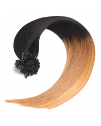 Ombre Bonding Keratin Extensions, 1g, #1/27