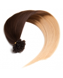 Ombre Bonding Keratin Extensions, 1g, #4/613